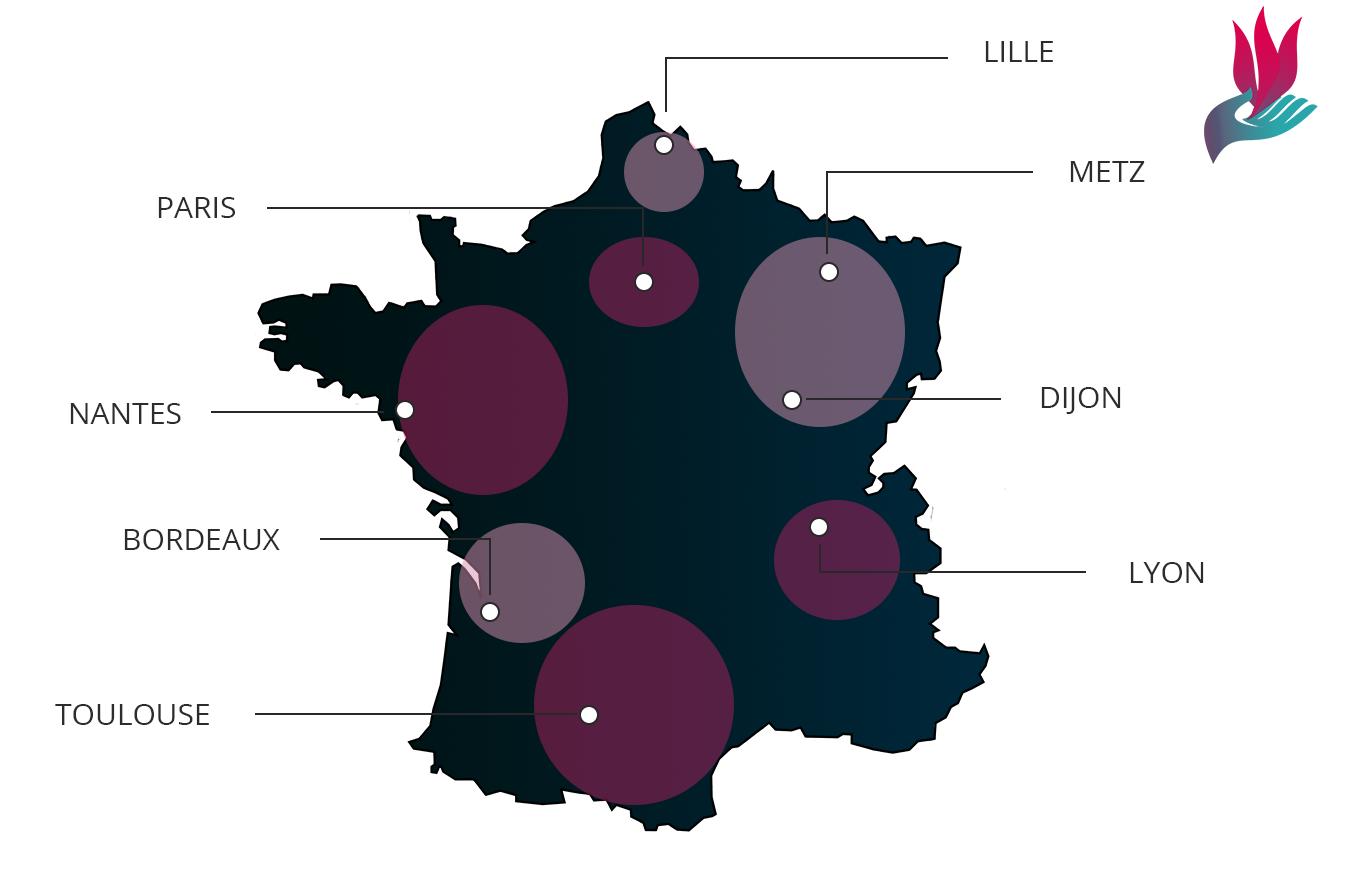 Carte des territoires de France où Renaissance 2020 est présent
